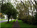 TA1032 : Sutton Road's Southern Footpath by Andy Beecroft