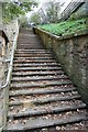 TQ7812 : Steps leading up from Battle Road : Week 42