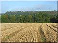 SU7596 : Farmland, Stokenchurch by Andrew Smith