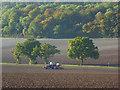 SU7797 : Farmland, Radnage by Andrew Smith