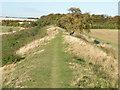 TL5553 : Fleam Dyke looking NW by Keith Edkins