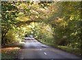 SP8301 : Road through woodland by Roger