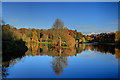 ST7734 : Autumn Colours - Stourhead by Mike Searle