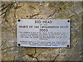 TM1473 : Plaque on Big Head by Adrian Cable
