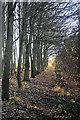 TL7057 : Footpath to Kirtling by Bob Jones