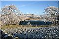NT4435 : Frosty farmland : Week 48