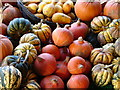 SP2656 : Squash and Gourds by Ian Paterson