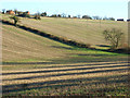 SP9304 : Stubble below Chartridge by Andrew Smith