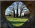 TL3855 : Scene Through a Headstone, Comberton Churchyard by Trevor Harris