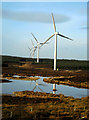 NS6246 : Whitelee Wind Farm : Week 51