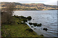 R2789 : Lough Inchiquin - southern shoreline by Bob Jones