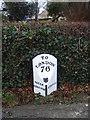 TL1691 : Milestone Norman Cross by Michael Trolove