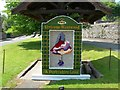 SK1969 : Well Dressing , Ashford in the Water by DAVID M GOODWIN