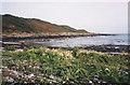 SC4890 : Shoreline at Port Mooar by Trevor Rickard