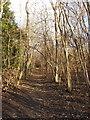 SU7886 : Footpath above Hambleden Manor by David Hawgood