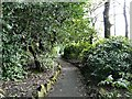 SJ9493 : Pole Bank Footpath by Gerald England