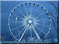 NS5267 : The Renfrewshire Wheel : Week 3