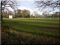TL4874 : Cricket field, Wilburton by Hugh Venables