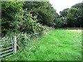 TL4953 : Field corner by Enttauscht
