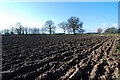 SJ5676 : Ploughed field by Dave Croker