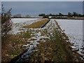 TL6656 : Snowy farmland by Hugh Venables