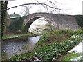 NS3317 : The auld Brig o' Doon by James Denham