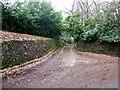 TL0118 : Stone flanked driveway by Rob Farrow