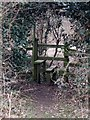 SP9305 : Stile in the hedge, Asheridge by Rob Farrow