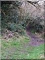 SP9305 : Chiltern Heritage Trail footpath by Rob Farrow