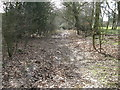 TQ0721 : Bridleway to the east of Beeding's Copse by Dave Spicer