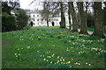 SX5155 : The garden at Saltram by Adrian Platt