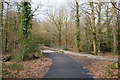 SU3916 : Path and Cycleway at Lord's Hill by Peter Facey