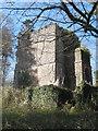 SX4065 : Mausoleum of Sir James Tillie of Pentillie Castle by Rod Allday