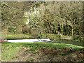SX4371 : Gunnislake, Weir by Brian