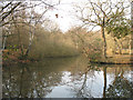 TQ4196 : Epping Forest: southern pond at Strawberry Hill by Stephen Craven