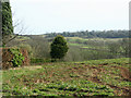 ST6261 : 2009 : Looking south near Chelwood by Maurice Pullin