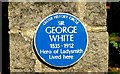 Photo of George White blue plaque