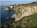 SX0551 : Cliffs, Carlyon Bay by Derek Harper
