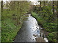 SP0579 : River Rea Approaching Lifford From Lifford Lane. by Roy Hughes