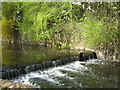 SP0683 : The River Rea, Cannon Hill Park by Roy Hughes