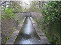 SP0684 : River Rea From Edward Road by Roy Hughes