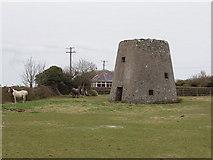 S9704 : Ruined windmill near Kilmore Quay by David Hawgood