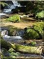 SW7329 : Stream near Constantine by Brian Slater