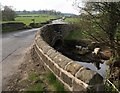 SE2559 : Bracken Bridge : Week 15