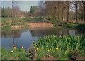 SO5063 : Pond near Park House - 1 : Week 16