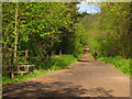 TQ4971 : Bridleway in Joyden's Wood by David Anstiss