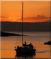J5082 : Yacht in Bangor harbour : Week 17