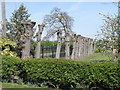 TL1556 : Pollarded trees, Wyboston by Michael Trolove