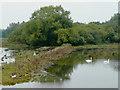 SJ9320 : River Penk flood plain, near Stafford by Roger  Kidd