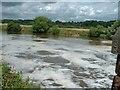 SJ5877 : Foaming water on River Weaver by Barry Boxer